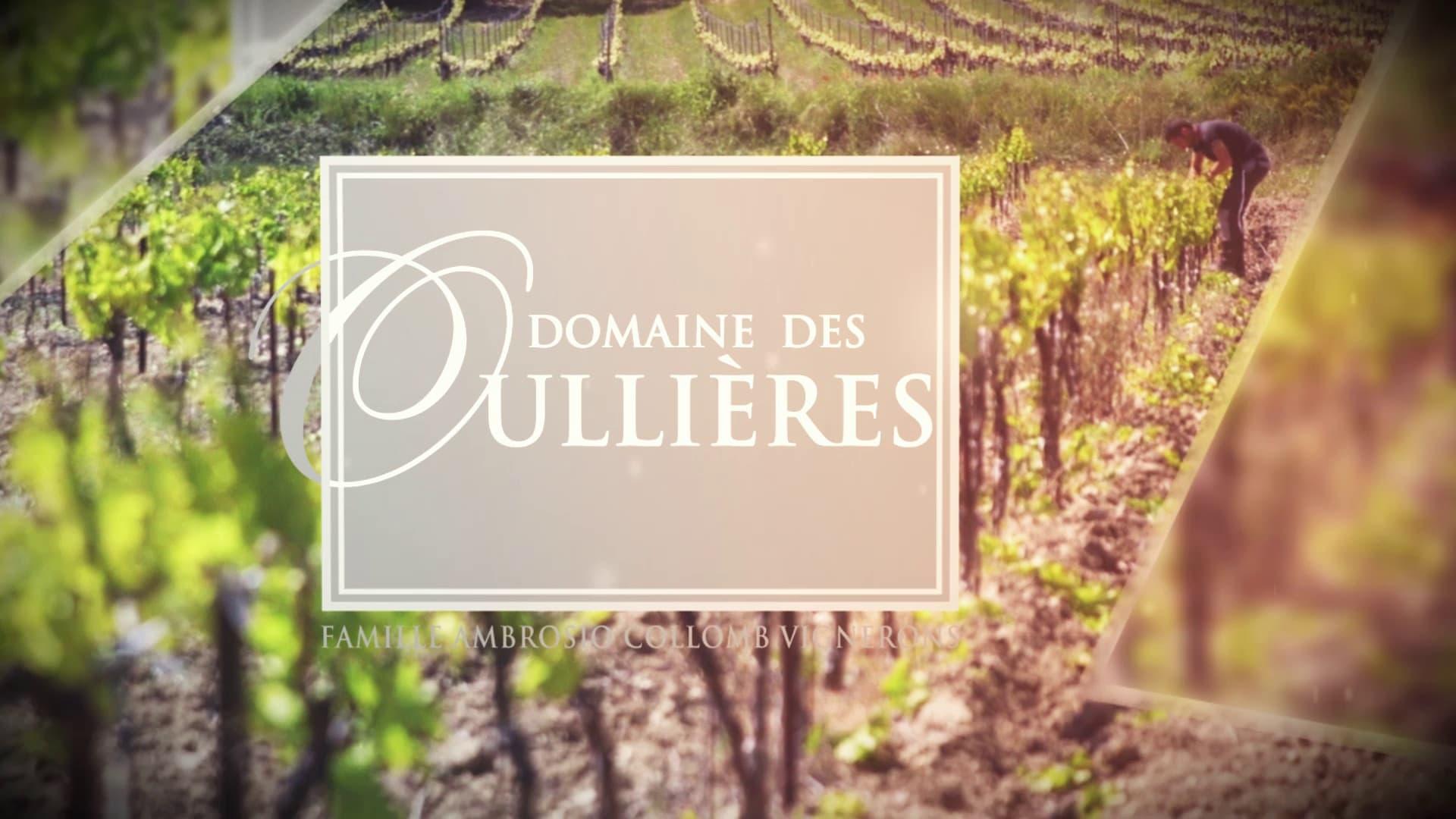 Série de Film d'Entreprise au Domaine Des Oullières // Aix-en-Provence