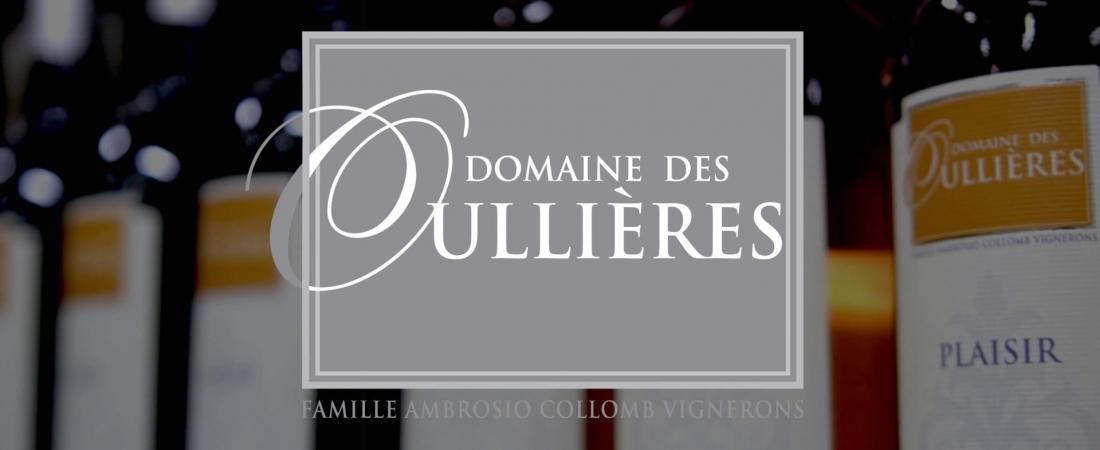 Film événement // Dégustation de vin au Domaine des Oullières