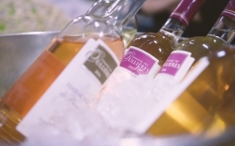 Film d'Entreprise vignoble Domaine des Oullières // Aix en Provence